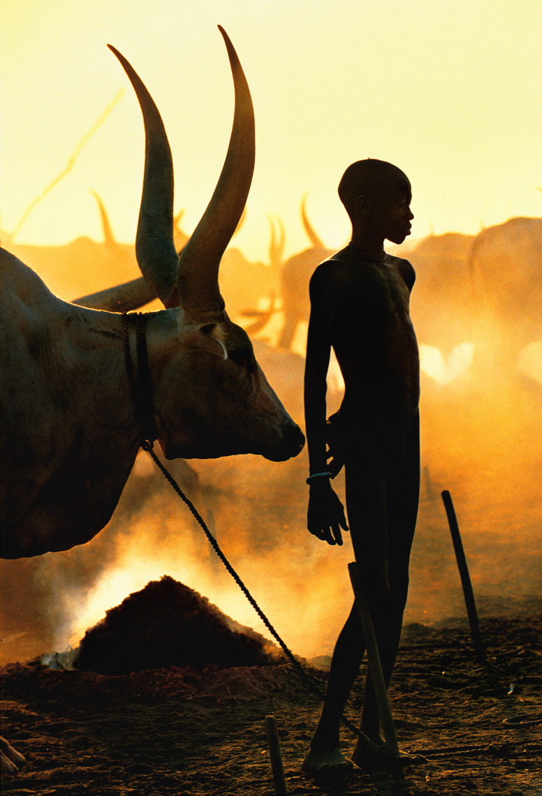 Dinka Boy with Namesake Ox, South Sudan