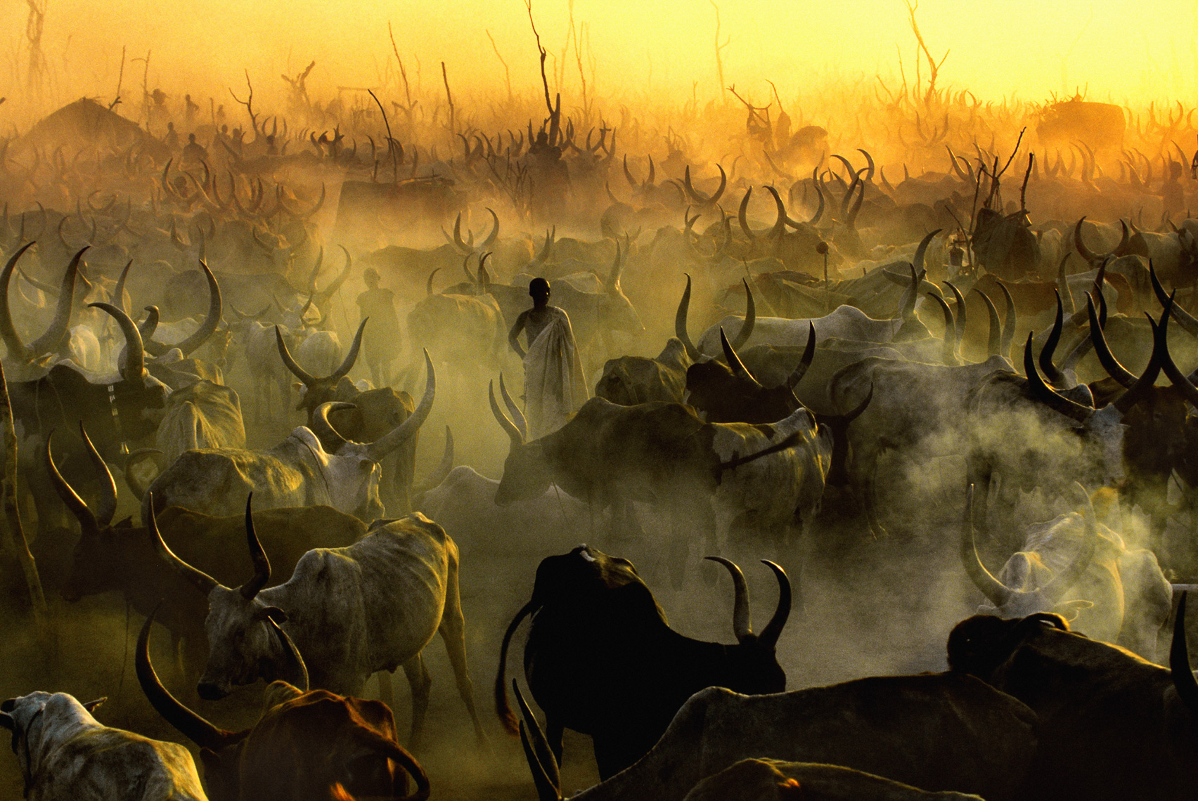 Dinka Cattle Camp at Sunset, South Sudan