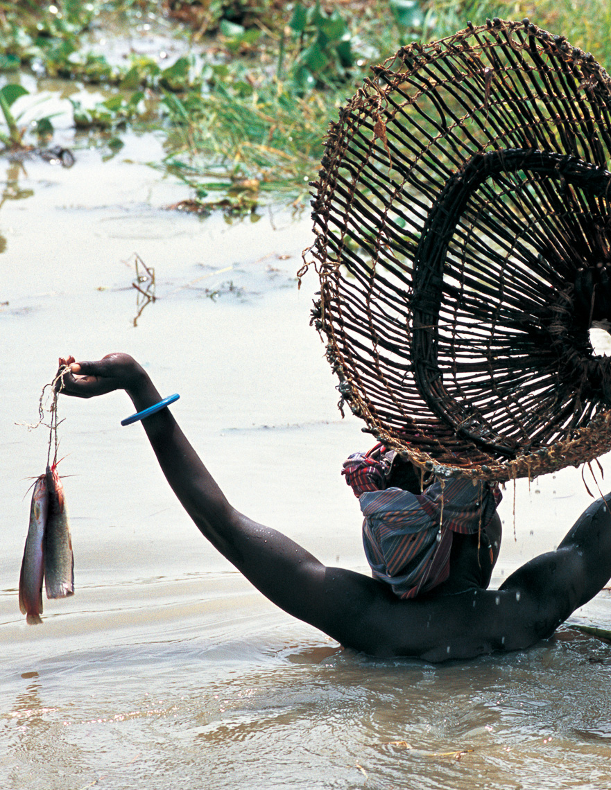 Dinka Woman Fishing with Basket, South Sudan