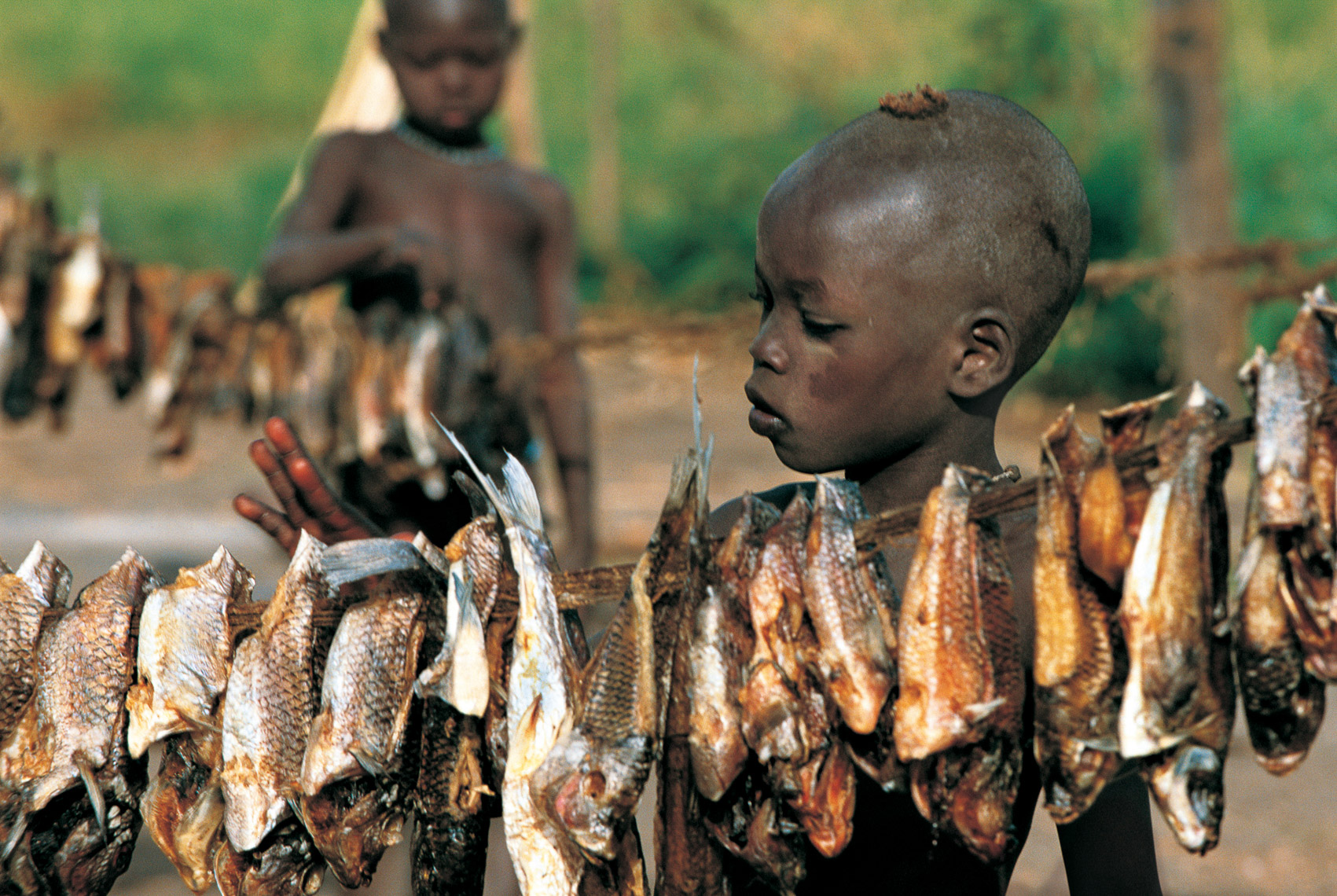Dinka Child Drying Fish in the Sun, South Sudan